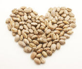 Beans heart — Stock Photo