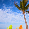 Royalty-Free Stock Photo: Summer scene Colorful chairs and palm trees at a tropical beach in Florida