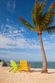 Summer scene Colorful chairs and palm trees at a tropical beach in Florida — Stock Photo