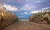 Path to the beach at sunrise or sunset — Stock Photo