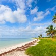 Summer at a tropical paradise in Florida Keys USA — Stock Photo #38919127