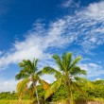 Summer at a tropical paradise in Florida Keys USA — Stock Photo