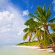 Summer at a tropical paradise in Florida Keys USA — Stock Photo