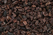 Cacao nibs — Stock Photo