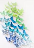 Multi-gekleurde suiker vlinders op een witte achtergrond — Stockfoto