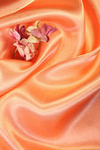 Flowers on orange satin — Stock Photo