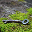 Stock Photo: Old key