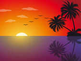 Tropical sunset on the beach — Stock Vector