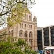 Natural History Museum in London — Stock Photo