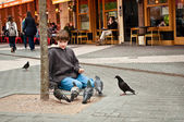Junge und Tauben — Stockfoto