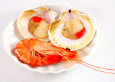 Prawn and red clams — Stock Photo