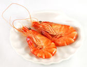 Two red prawns 2 — Stock Photo