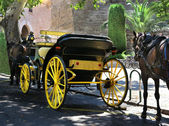 Carriage with horses — Stock Photo