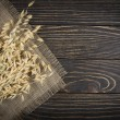Oat cereal grain — Stock Photo #39497635