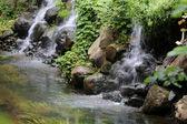 Beautiful small waterfall — Stock Photo