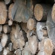 Pile wood — Stock Photo
