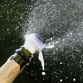 Popping champagne — Stock Photo