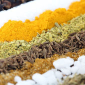 Row of spices — Stock Photo