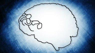 Human Brain Animation — Stock Video
