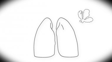Human Lung Animation — Stock Video