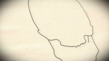 Human Skull Animation — Stock Video
