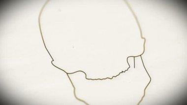 Human Skull Animation — Stock Video