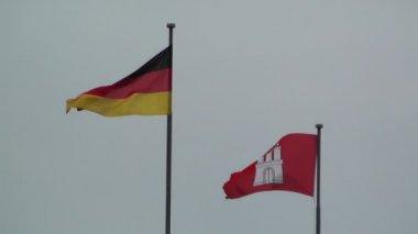 Hamburg niemcy flaga niemiec i hamburgu — Wideo stockowe