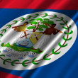 Belize flag waving — Stock Video