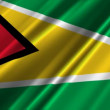 Guyana flag waving — Stock Video