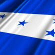 Honduras Flag waving — Stock Video