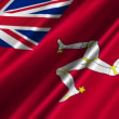 Isle Of Man Civil Ensign Flag waving — Stock Video