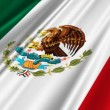 Mexico Flag waving — Stock Video