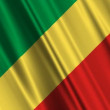 Republic Of The Congo Flag — Stock Video