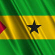 Stock Video: Sao Tome and Principe Flag