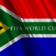 South Africa FIFA World Cup 2010 Flag — Stock Video