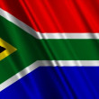 South Africa Flag — Stock Video