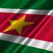 Stock Video: Suriname Flag