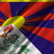 Stock Video: Tibet Flag