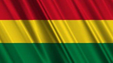 Bolivya bayrak sallayarak — Stok video