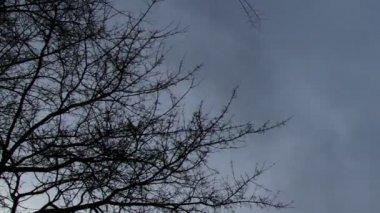 Horreur scène nuages timelapse — Vidéo