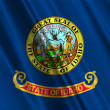 Idaho State Flag — Stock Photo #15856903