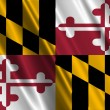 Maryland State Flag — Stock Photo