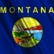 Montana State Flag — Stock Photo