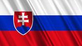 Slovakia Flag — Stock Photo