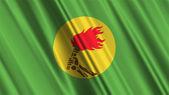 Zaire Flag — Stock Photo