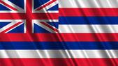 Hawaii State Flag — Stock Photo