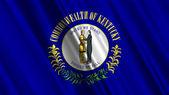 Bandeira do estado de Kentucky — Fotografia Stock