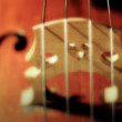 Violoncello close-up - Stock Photo
