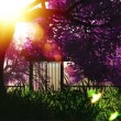 Mysterious cherry blossoms japanese garden cartoony 3D render — Stock Video