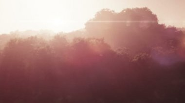 Magic sunset over lush wilderness mountains realistic aerial 3D render - light beams — Stock Video